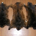 Natural Brown Possum skins